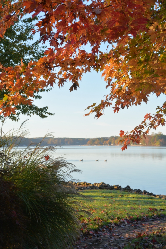Fall color Lake Norman | ©homeiswheretheboatis.net #fall #autumn #lake