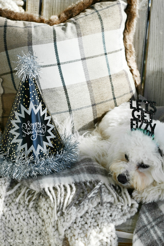 Happy New Year from Sophie | ©homeiswheretheboatis.net #dogs #newyear #bichonfrise