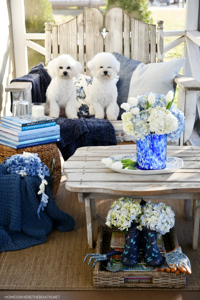 Lola and Sophie porch | ©homeiswheretheboatis.net #dogs #bichonfrise