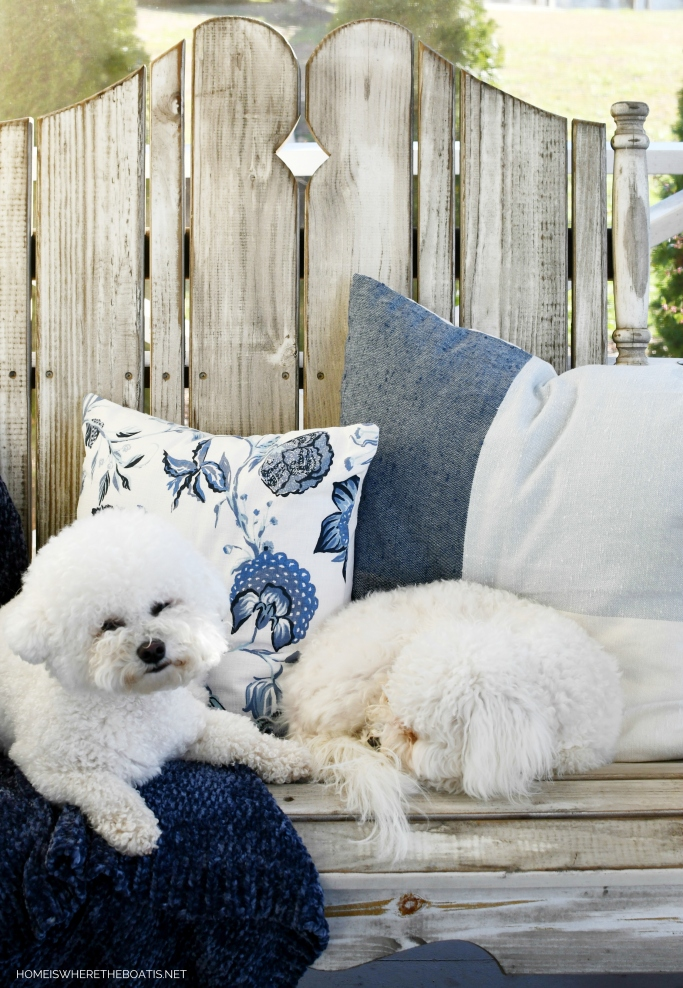 Lola and Sophie on the porch and January Blues | ©homeiswheretheboatis.net