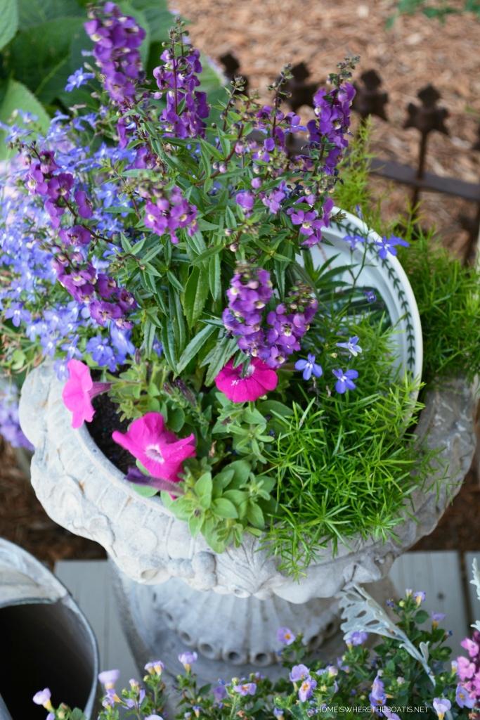 A Garden Metaphor for Life and Chalkboard Inspiration | ©homeiswheretheboatis.net #flowers #garden #shed #pottingshed