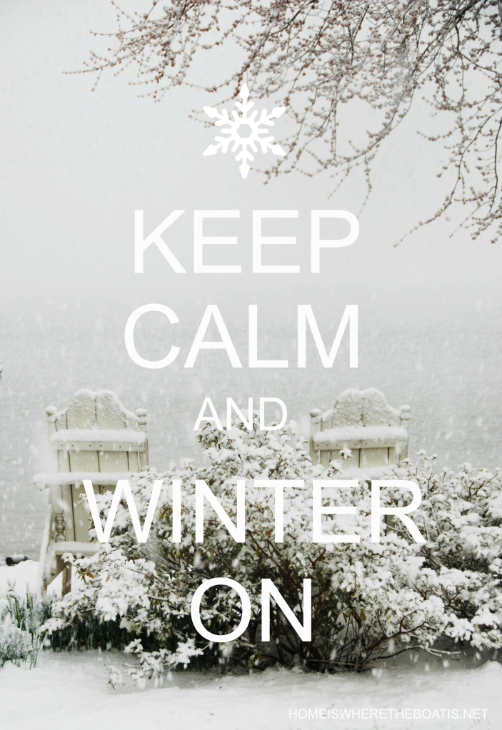 For the Cold and Snow Weary: Keep Calm and Winter On Projects and Recipes   © homeiswheretheboatis.net #winter #recipes #DIY #tablescapes