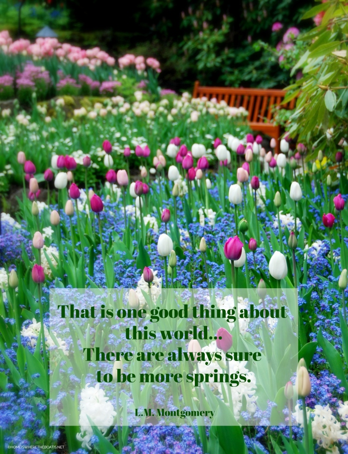 """""""That is one good thing about this world... There are always sure to be more springs."""" - L.M. Montgomery"""