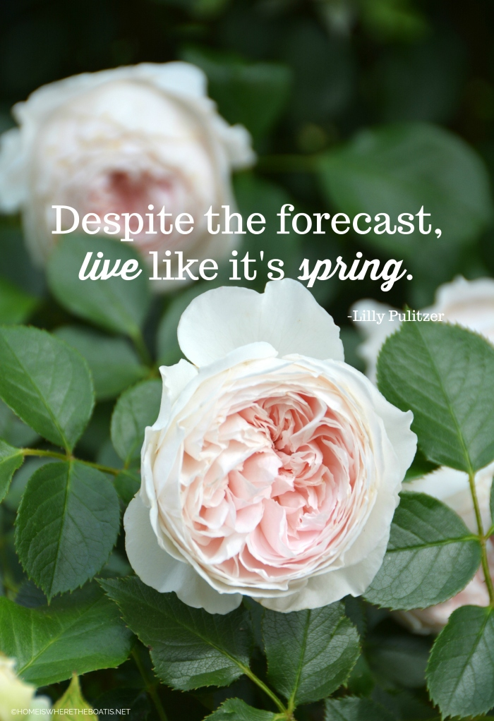 """""""Despite the forecast, live like it's spring."""" -Lilly Pulitzer"""
